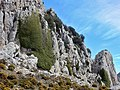 Malla de Llop from Famoca hike (26885965766).jpg