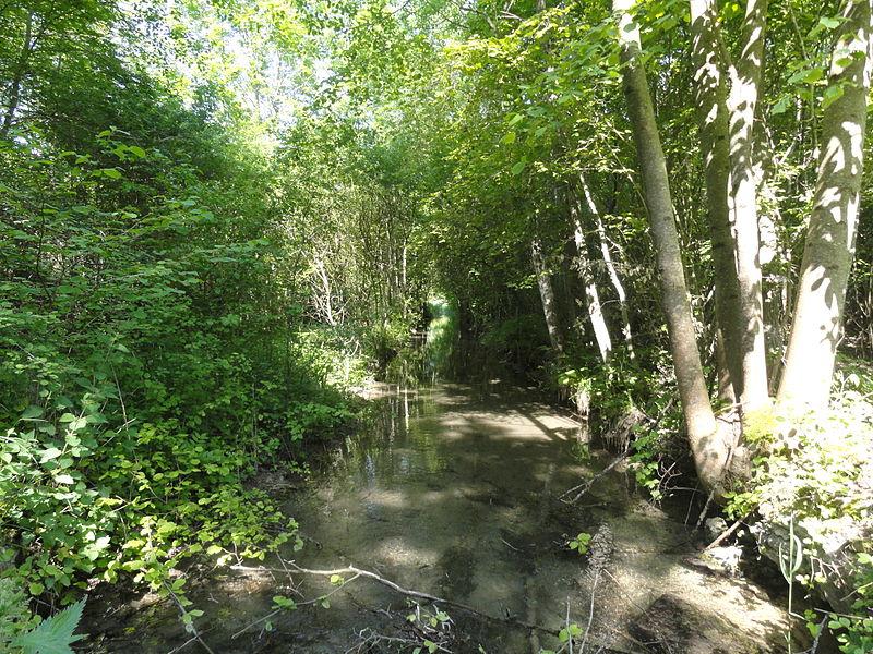 La Tranchée au sein des marais d'Athis-Cherville (ZNIEFF, hors zone Natura 2000).