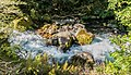 Marian Creek in Fiordland National Park 01.jpg