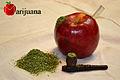 Marijuana Pipe.jpg