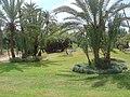 Marrakesh - 2008 - panoramio (75).jpg