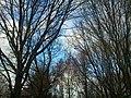 Meilengraben, 19.12.13 - panoramio.jpg