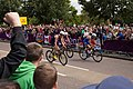 Men's Triathlon (8179914130).jpg