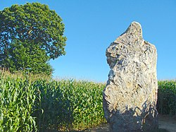Menhir de La Pierre Longue 02.JPG