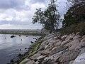 Merivälja - panoramio - Aulo Aasmaa (25).jpg