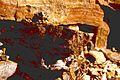 Michi 54--Mexican Onyx Quarry--Baja--March 1996 (14937306141).jpg