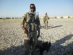Military working dog team delivers 131031-A-UK859-021.jpg