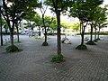 Minatojimanakamachi - panoramio (79).jpg