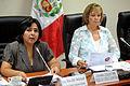Ministra Ana Jara en comisión de la mujer (7027293429).jpg