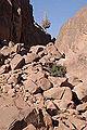 Mont Sinaï - Egypte 07-12 (7597082184).jpg