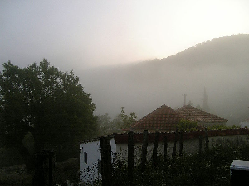 File:Morning fog 3.jpg