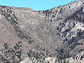 Mount Charleston North Loop from South Loop 1.jpg