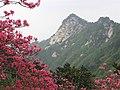 Mount Guifengshan in Macheng City, Huanggang, Hubei 9.jpeg