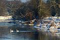 Mulde im Winter k6.jpg