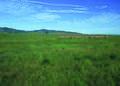 NRCSCA01014 - California (645)(NRCS Photo Gallery).jpg