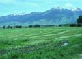NRCSMT84001 - Montana (5047)(NRCS Photo Gallery).tif