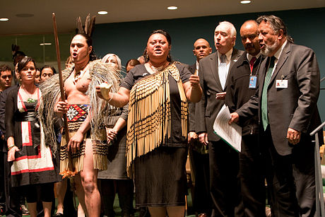 New Zealand endorses the United Nations Declaration on the Rights of Indigenous Peoples in April 2010 NZ delegation UN Forum on Indigenous Issues.jpg