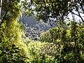 Na trilha da Pedra do Sino - panoramio.jpg