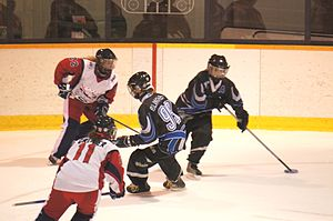 Ringette - Bourassa Royal against Montréal Mission in NRL
