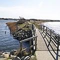 Naturschutzgebiet Holnis 3.jpg