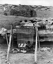 Navajo weaver with sheep