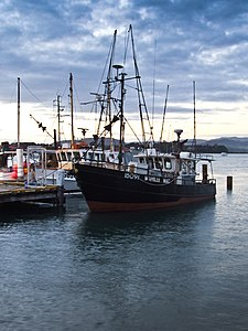 New Zealand Fishing Boat-3381.jpg