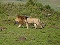 Ngorongoro Crater (9) (14168766593).jpg