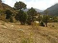 Niğde - panoramio.jpg