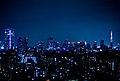 Night view from Westin Tokyo.jpg
