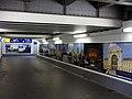 Nordtunnel des Freiburger Hauptbahnhofes mit internationalen Bahnhofsfotos 2.jpg