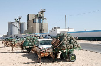 English: Nouadhibou, Mauritania, cooking gas f...