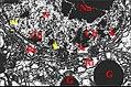 Noyau d'adénocyte prégonoporal.jpg