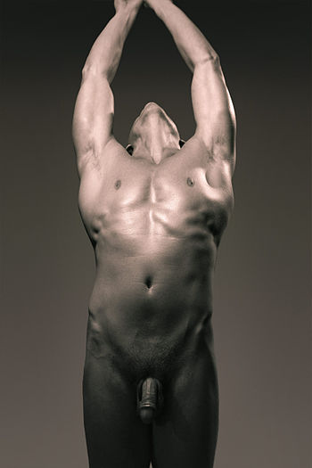 English: Nude male torso