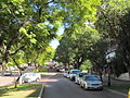 OIC west perth mount st from fwy 2.jpg