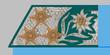 Oberst k.k. Gebirgstruppe 1907-18