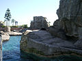 Ocean Park 海洋公園 (5380315704).jpg