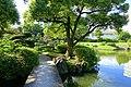 Old Yasuda Garden - Tokyo, Japan - DSC06529.jpg