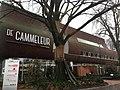 Openbare bibliotheek Dongen - Theek 5 - Dongen public library - 17 January 2020 -1.jpg