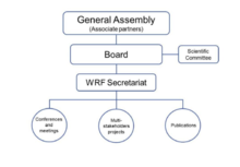 organisational structure of the world resources forum - World Vision Organizational Structure