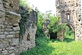 Ostaci srednjovekovne crkve (Ledinci) 6.7.2018 230.jpg