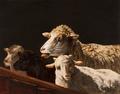 Ovelhas (1872) - Marques de Oliveira.png