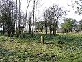 Overton Graveyard - geograph.org.uk - 431756.jpg