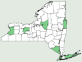 Oxalis corniculata NY-dist-map.png