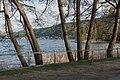 Pörtschach Hans-Pruscha-Weg Erlen am Seeufer 18042015 2138.jpg
