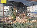 Přeštice - Betlém v kašně na náměstí.JPG