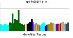 PBB GE PDGFC-gnf1h09218 s ĉe tn.png