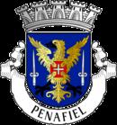 Brasão de Penafiel