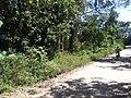 PQ Eco do Tiete - Zona Leste - SP - panoramio (323).jpg