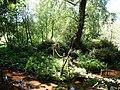 Paignton , Paignton Zoo, Monkey Island - geograph.org.uk - 1483557.jpg