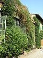 Palazzo budini gattai grifoni, giardino 02.JPG